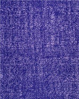VLC0001.019.06